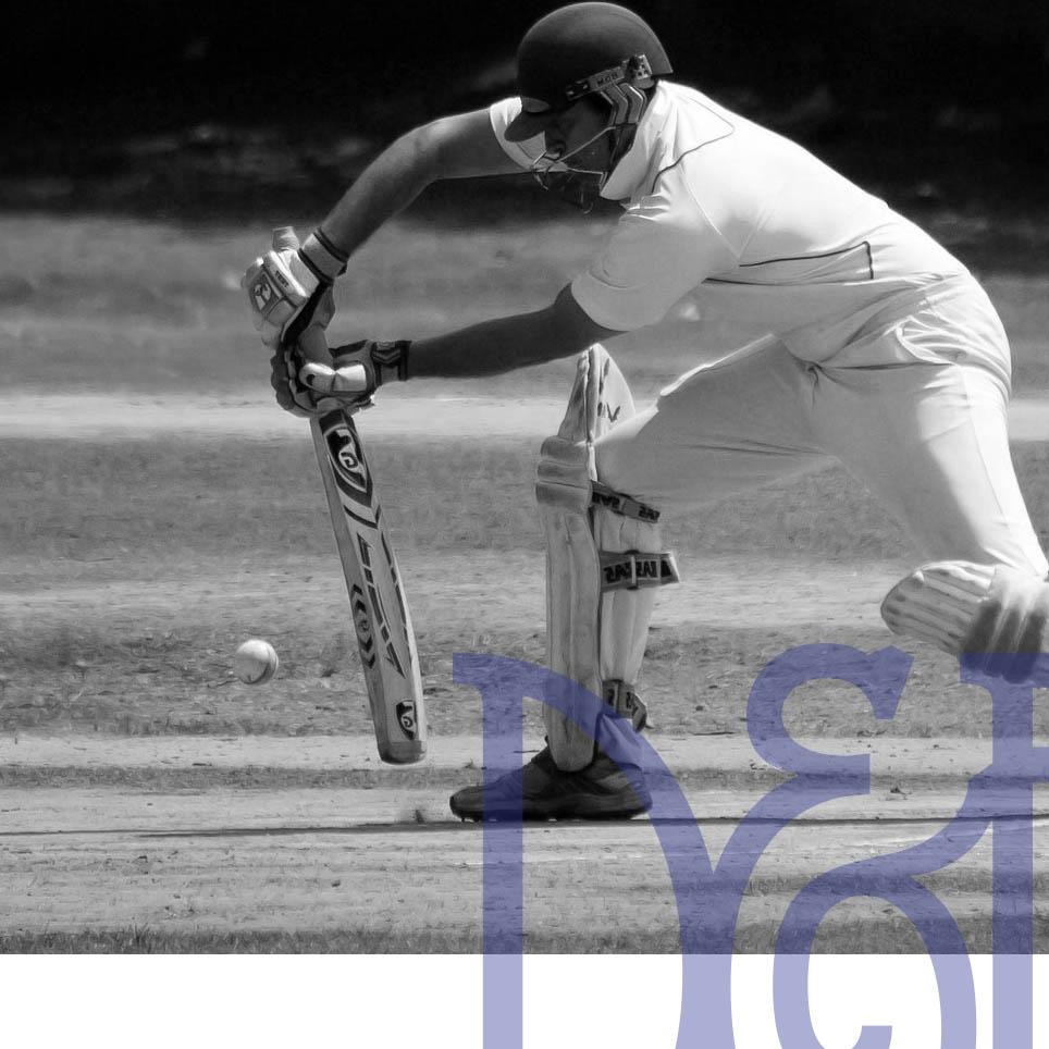 Site_Decor_Cricket1